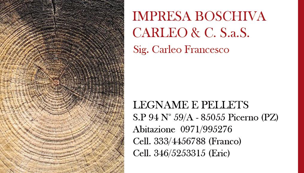 biglietto_carleo